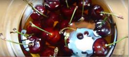 como preparar cerezas con chocolate al licor