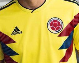 camiseta-de-colombia-rusia-2018-hombre-mujer-y-ninos-D_NQ_NP_640766-MCO26613325576_012018-F